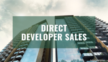 developer sales